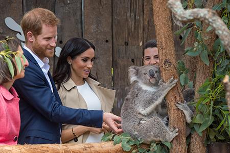 Kuvia kuninkaallisesta perheestä – kuvagalleria kuninkaallisista