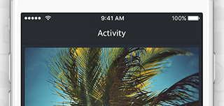 Activity Screenshot