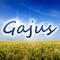 Gajus