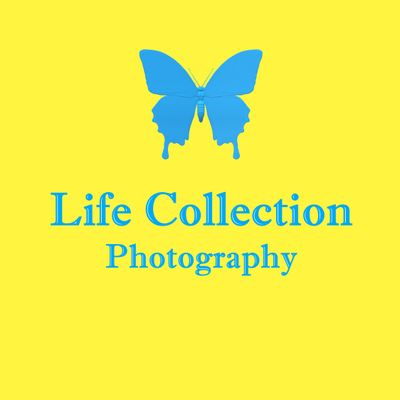 LifeCollectionPhotography