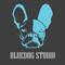 bluedog studio