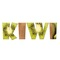 Studio KIWI