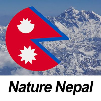 Worldlink nepal