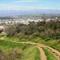 L.A. Nature Graphics