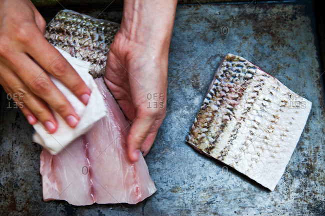 Cleaning a filet of striped bass