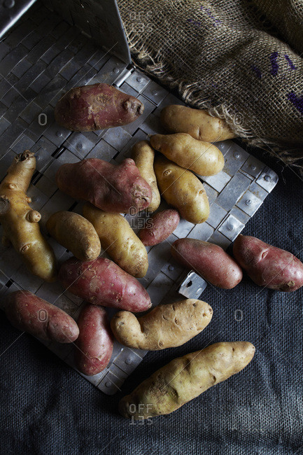 Brown and red fingerling potatoes on gray cloth with silver basket