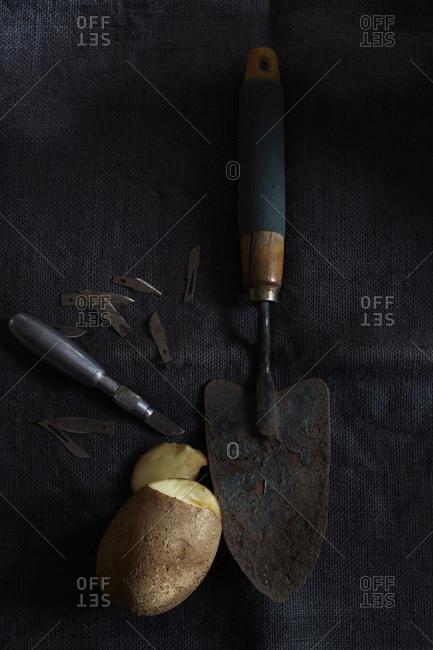 Still life of potato with exacto knife blades and garden shovel on dark cloth