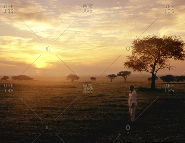 Dawn on Serengeti Plains with lone man standing in a field