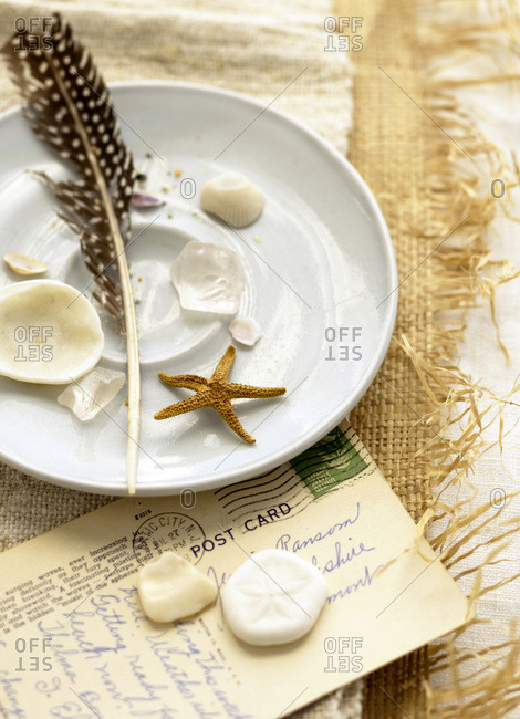 Shells, starfish and feather on raffia cloth with postcard and white plate