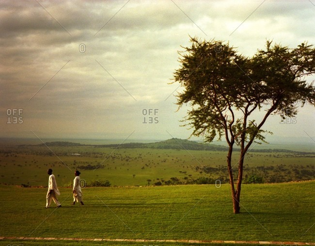 African man and woman walking on green grass by lone tree with view to the Serengeti Plains behind