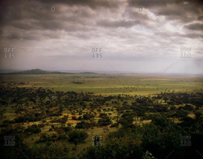 View of Serengeti plains