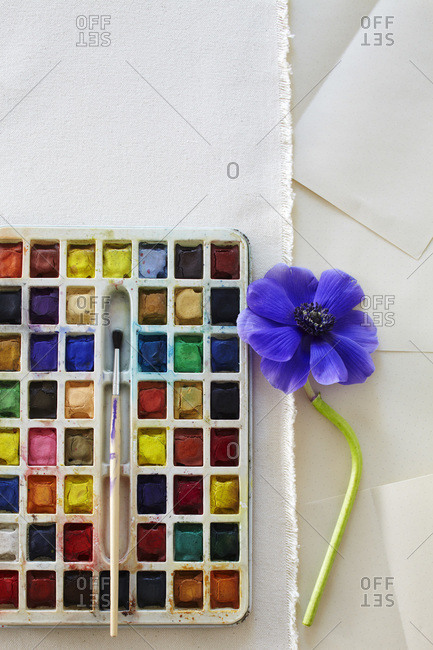Palette of watercolors with brush and anemone flower in purple.