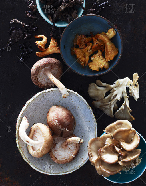 Variations of mushroom in bowls from above.