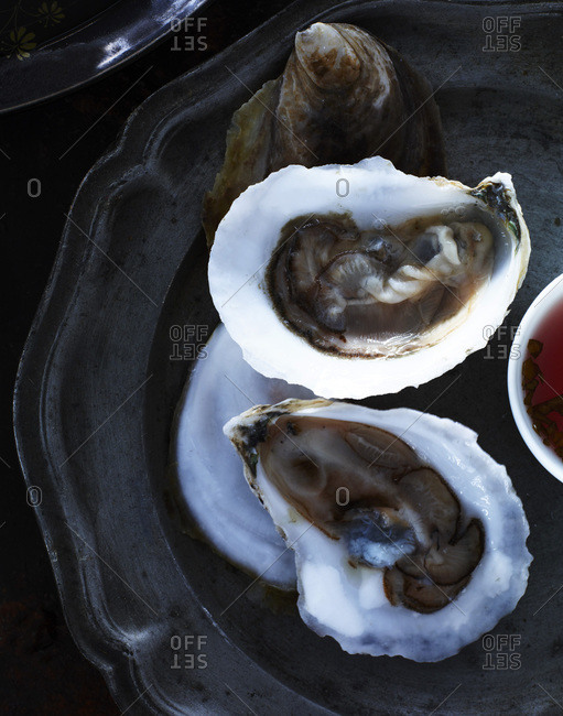 Oysters on pewter plate