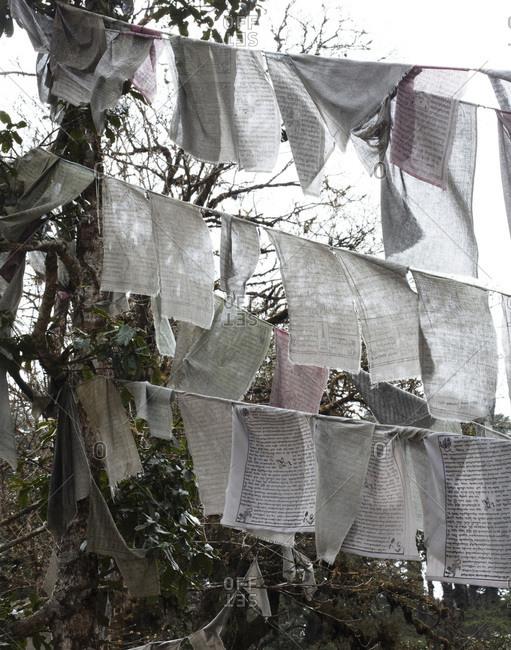 Prayer flags in mountains, Bhutan