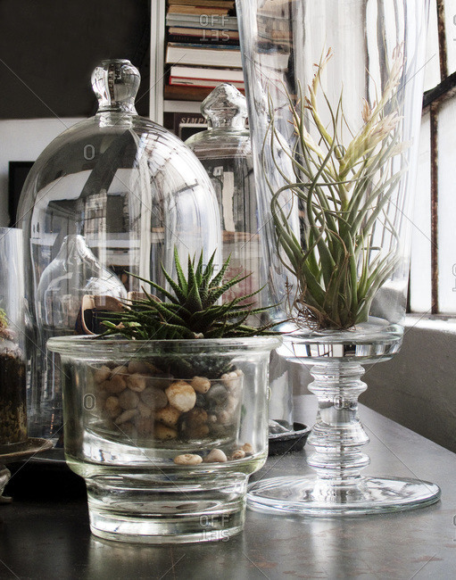 Different type of glassware on a table next to the window