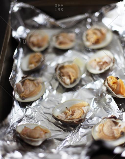 Arranged clams on aluminum foil
