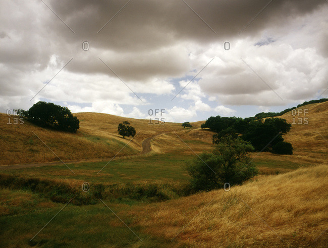 View of rolling green gold hills in Sonoma, CA with live oak trees and stormy skies