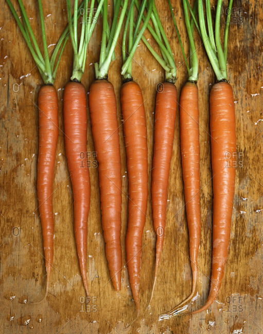 Fresh, wet carrots in a row.