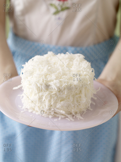 Delicious cake covered with coconut on plate.