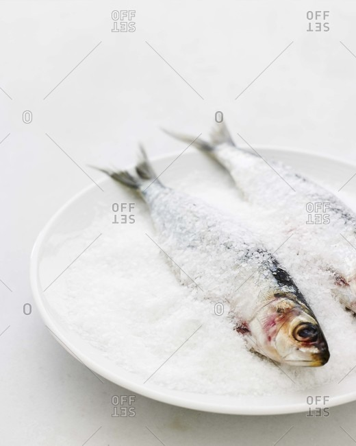 Two salted fish on a white plate