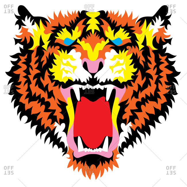 Roaring wild tiger