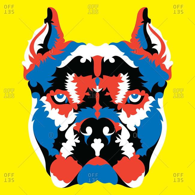 A pit bull dog portrait