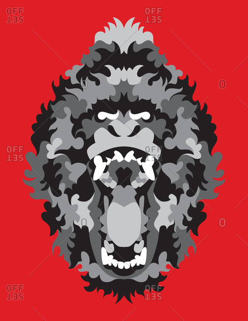 Mad gorilla roaring