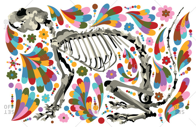 Squirrel Skeleton with Flowers