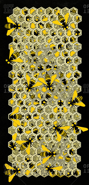 Working bees on a honeycomb