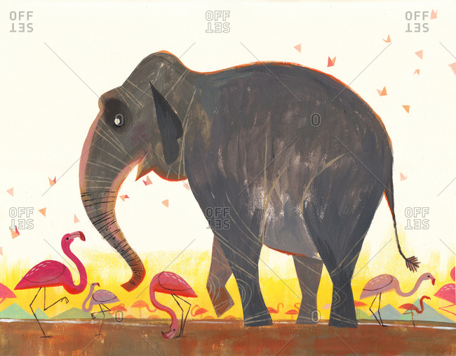 Elephant dancing with flamingos