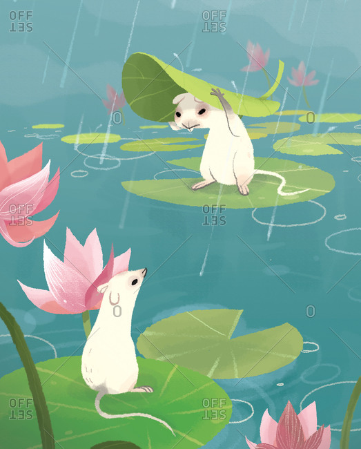 Cute mice sitting on water lilies on a lake in a rainy day
