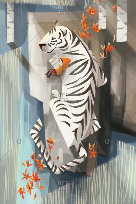 Young boy napping with white tiger