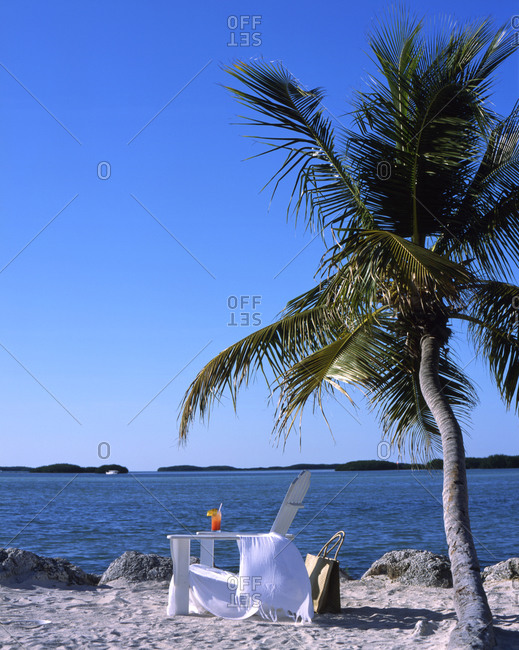 Beach with deck chair and palm tree.