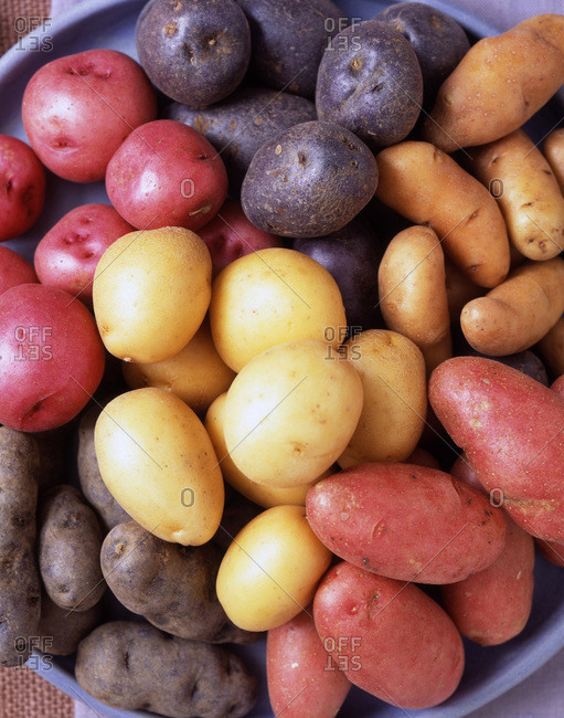 Different types of potato from above.
