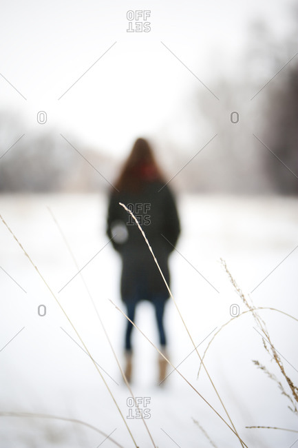 A woman walks through a snowy field with frozen grass blades in the foreground on an overcast winter day, in Fort Collins, Colorado