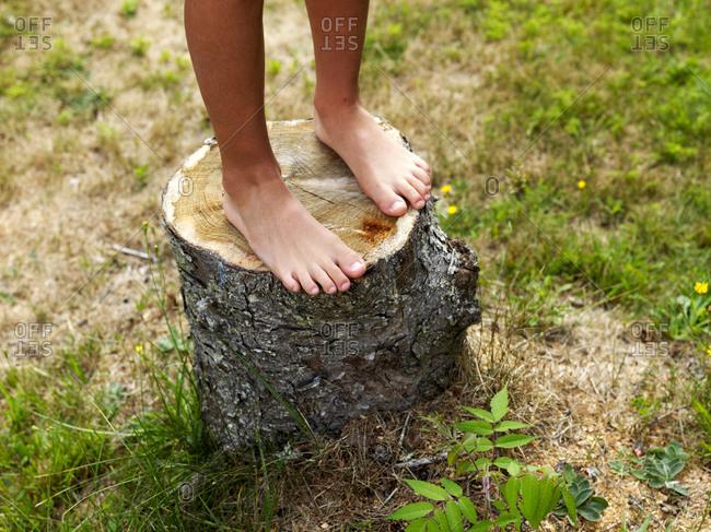 summer bare feet on tree trunk