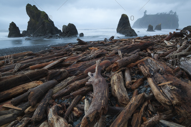 Sea stacks and piles of driftwood at Ruby Beach, Olympic National Park, Washington