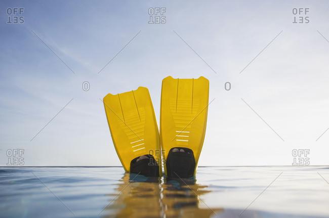 POV swim fins