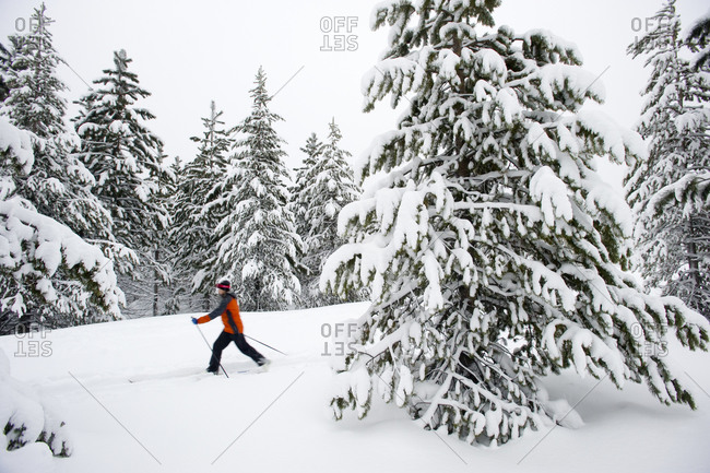 One young woman cross country ski's on a trail in the snow in Bend, Oregon (blurred motion)