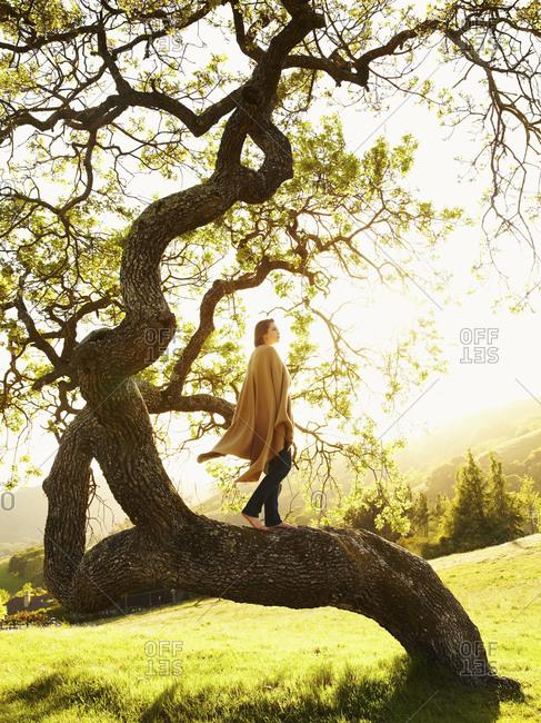 Caucasian teenager standing on tree branch