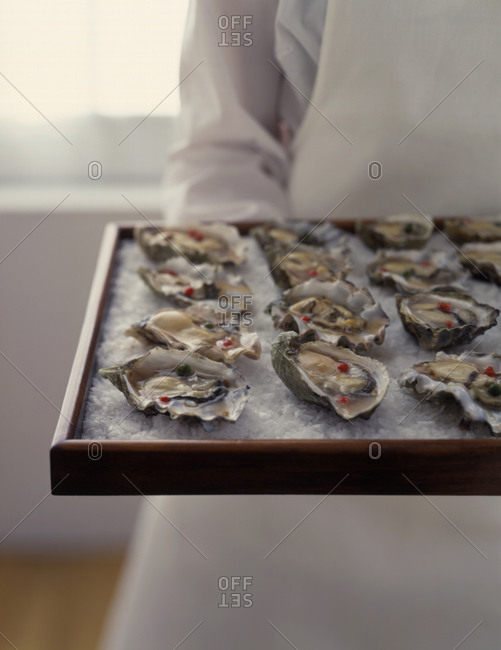 Oysters served on a bed of rock salt