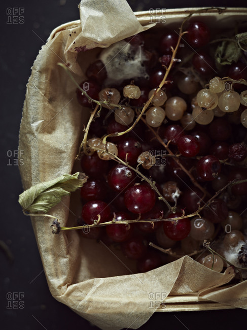 White and red currant in a fruit box from above.