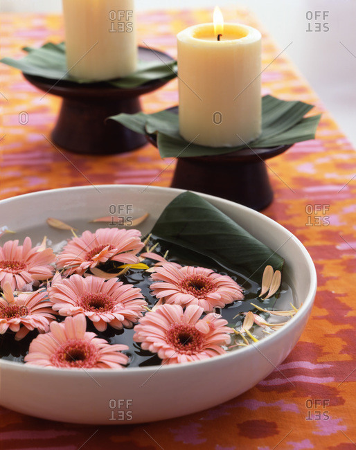 Bowl of water with pink gerberas on table