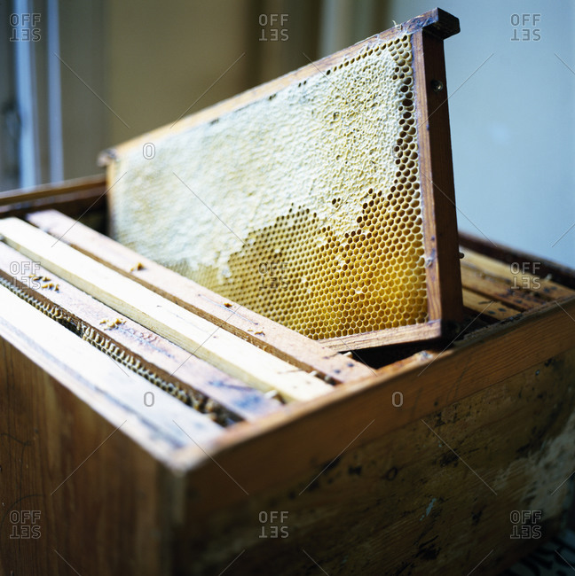 Beeswax on a wooden board in a box