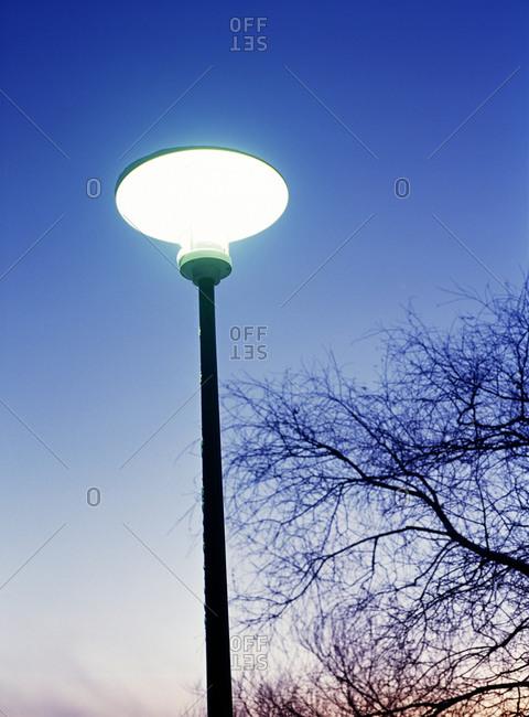 A lit streetlight at dusk
