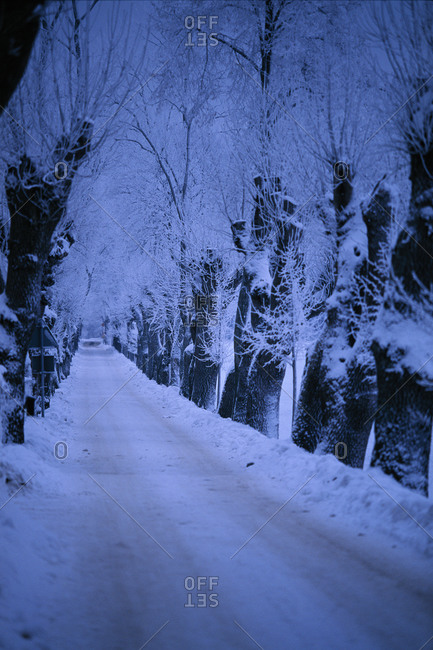 A country road covered in snow