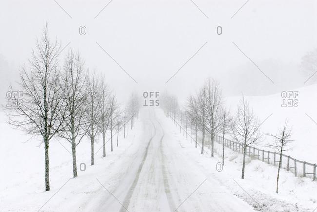 An empty winter road, Sweden