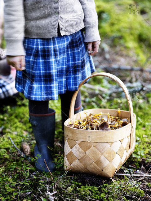 Girl with basket full of mushroom standing in forest autumn