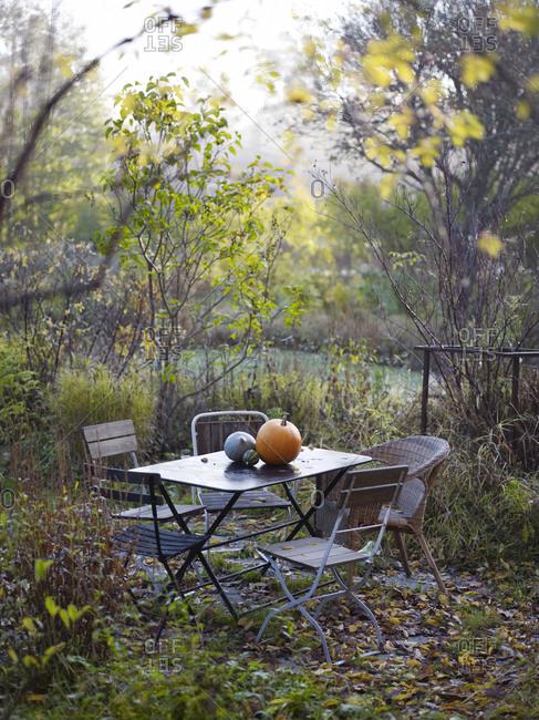 Pumpkins on outdoors table autumn